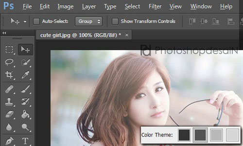 theme-photoshop04