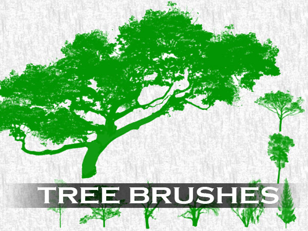 tree-brush